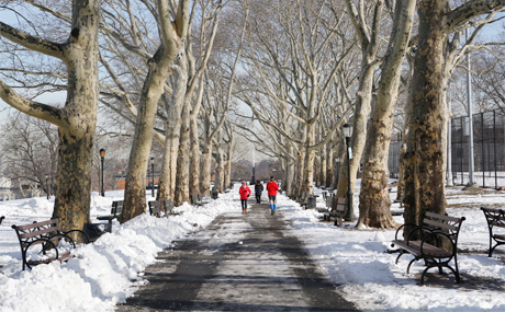 Things To Do in Sunset Park | Brooklyn