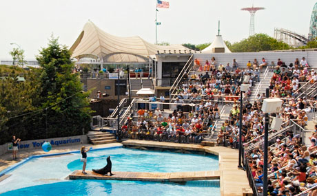 Nyc Zoos Aquariums The Official Guide To New York City