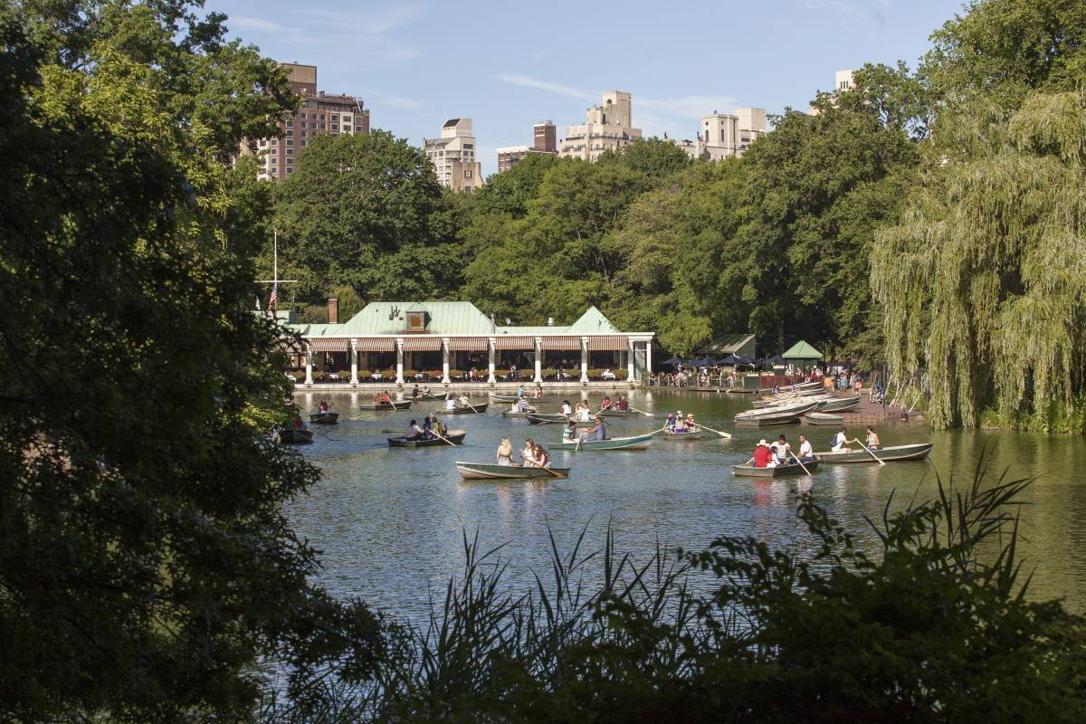 Luxury Hotels Near Central Park Nyc