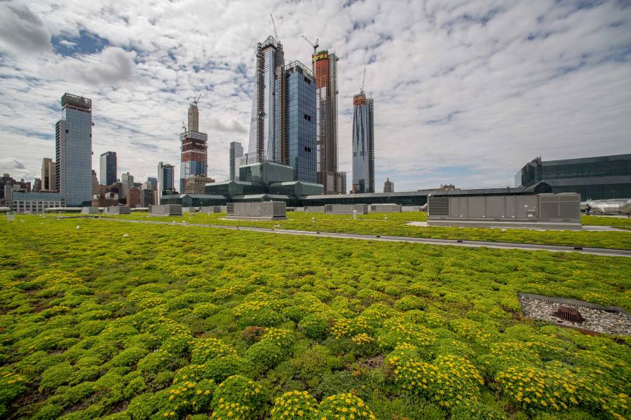 javits center, green roof