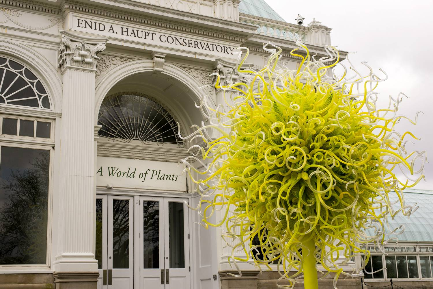 Dale Chihuly At The New York Botanical Garden Attractions