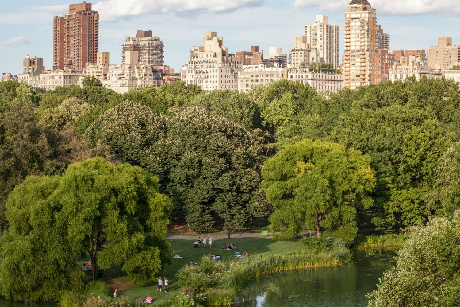Central Park Views The Official Guide To New York City