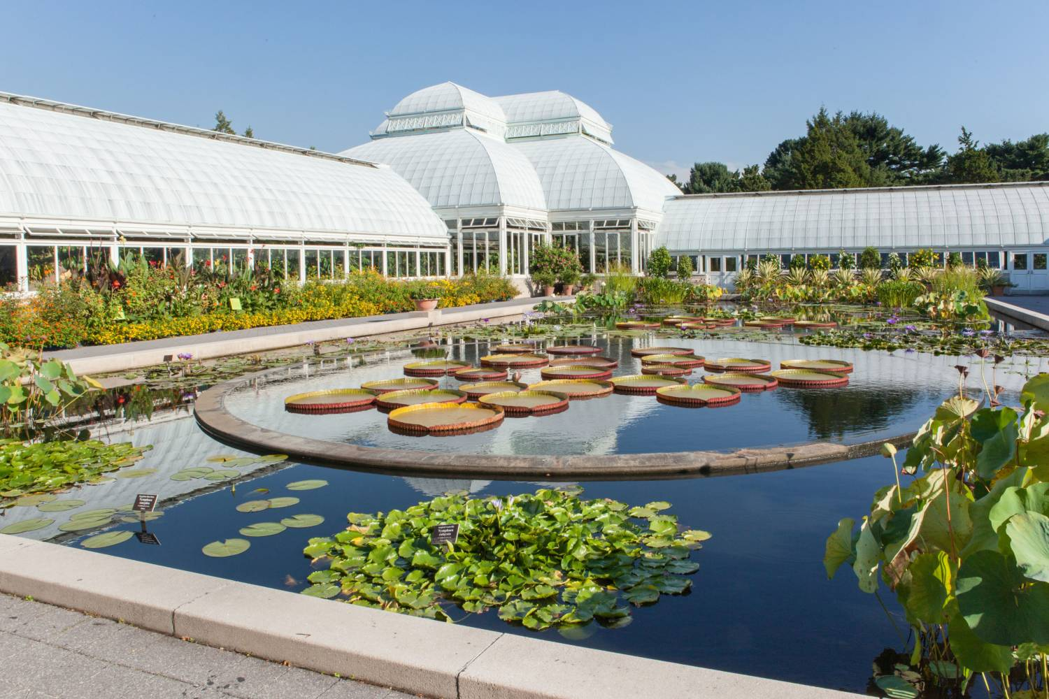 Photos of nyc s best gardens new york botanical garden - Hotels near brooklyn botanical garden ...