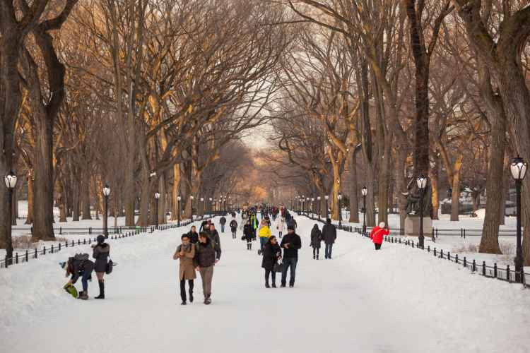 Fun Places To Eat Near Museum Of Natural History