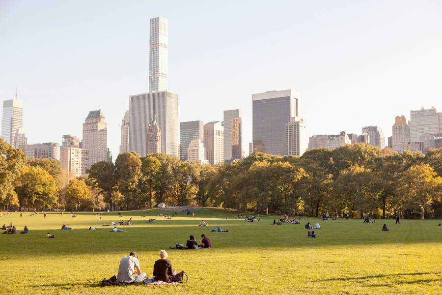 Best things to do in central park manhattan nycgo for Things to do in central ny