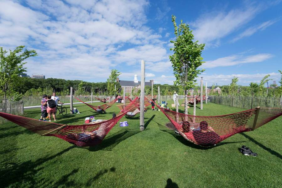 Hammocks, governors island