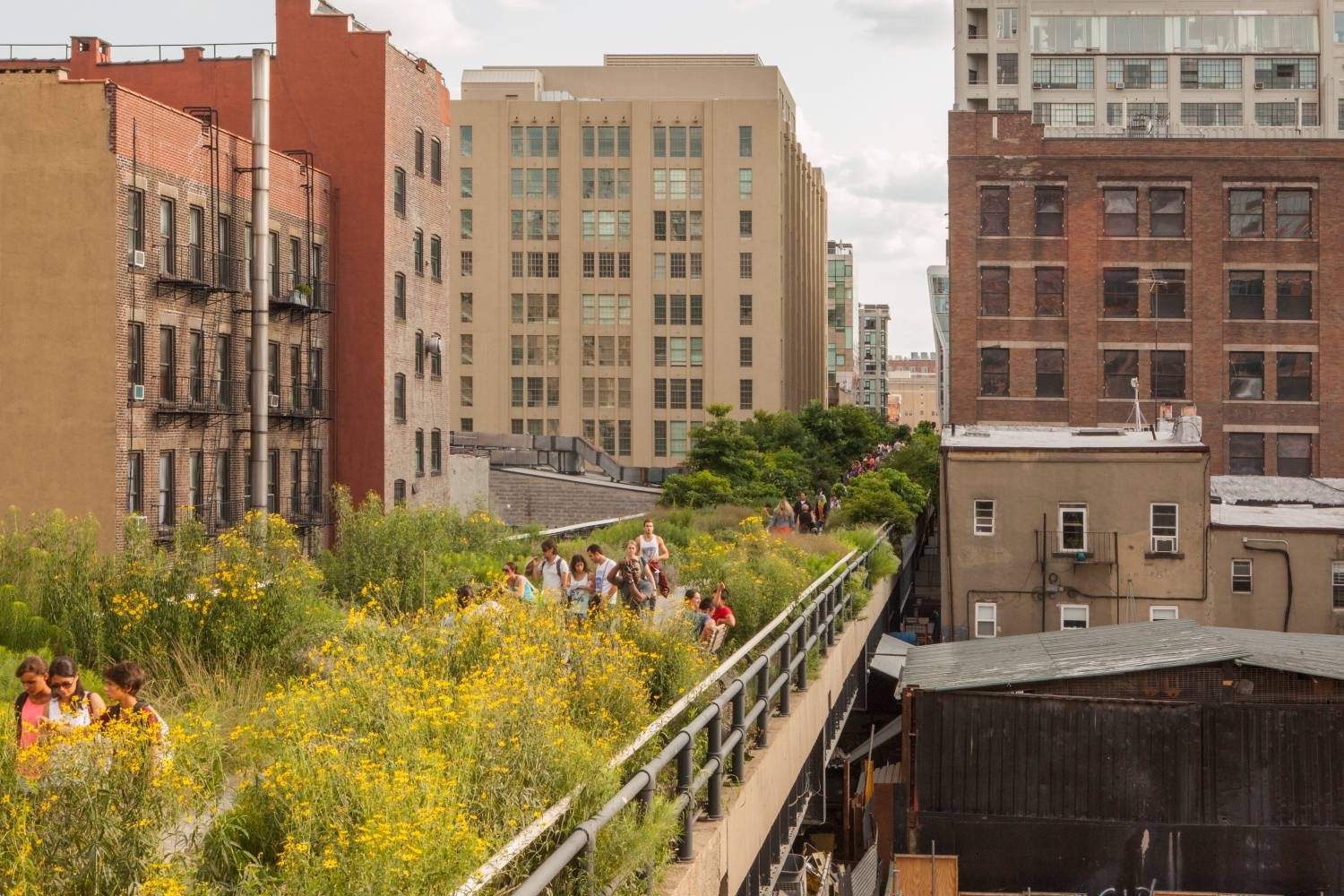 View of the High Line
