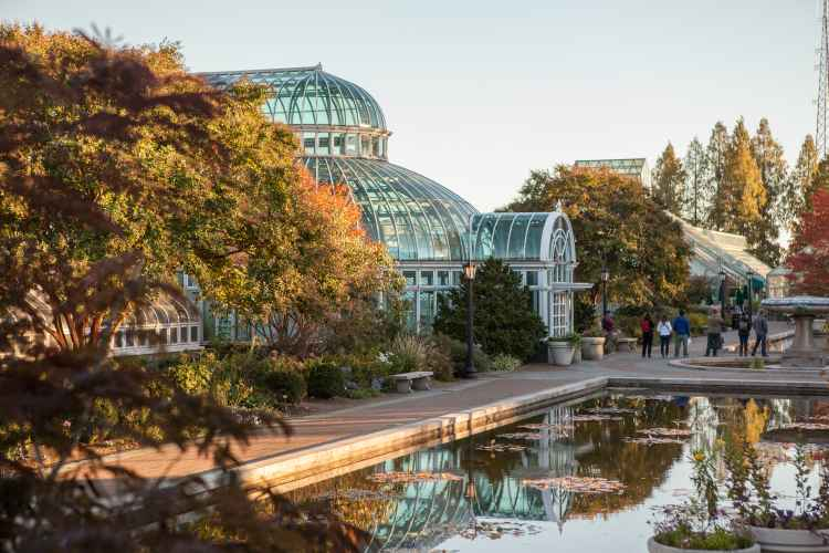Brooklyn botanical garden year round indoor outdoor - New york botanical garden directions ...