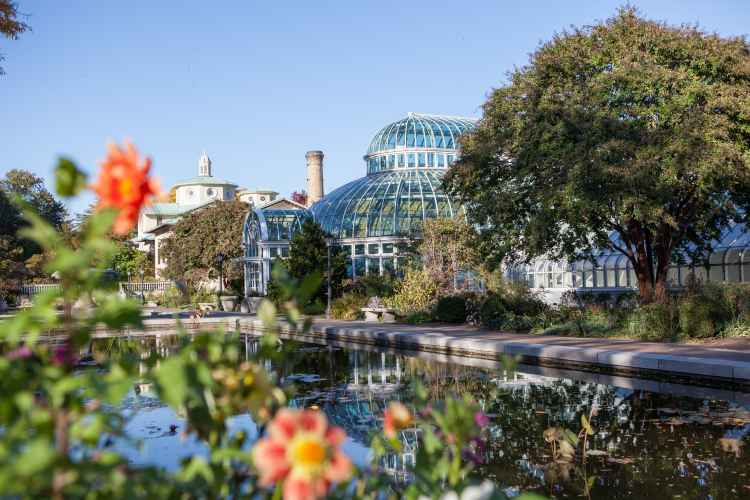 Brooklyn botanic garden the official guide to new york city for Brooklyn botanical garden tickets