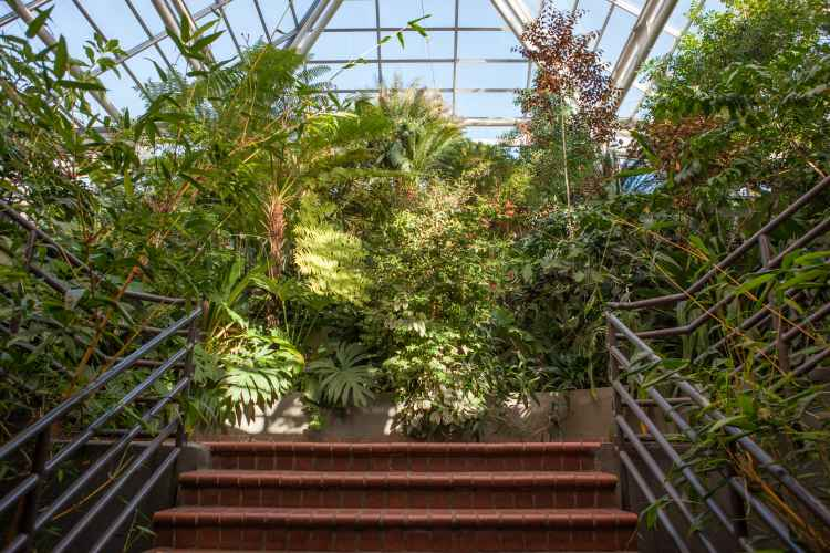 Brooklyn Botanical Garden: Year Round Indoor & Outdoor Exhibits