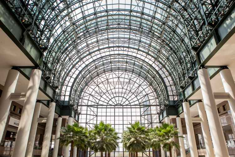 Brookfield Place palm trees