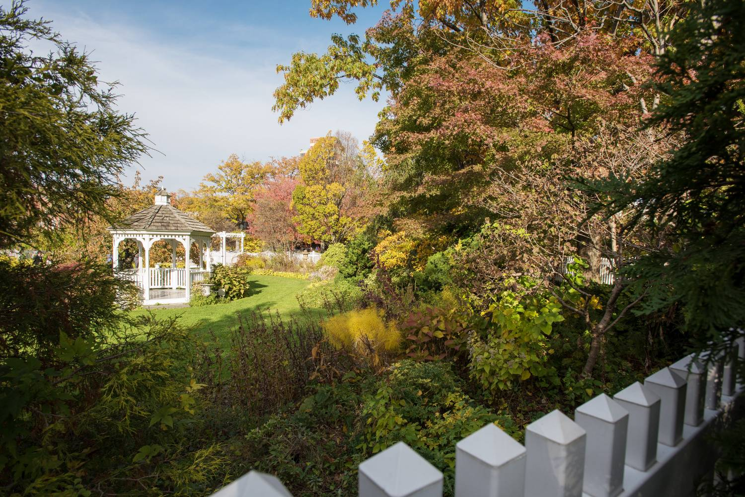 Queens Botanical Garden: Your Always- Up-to-Date Guide