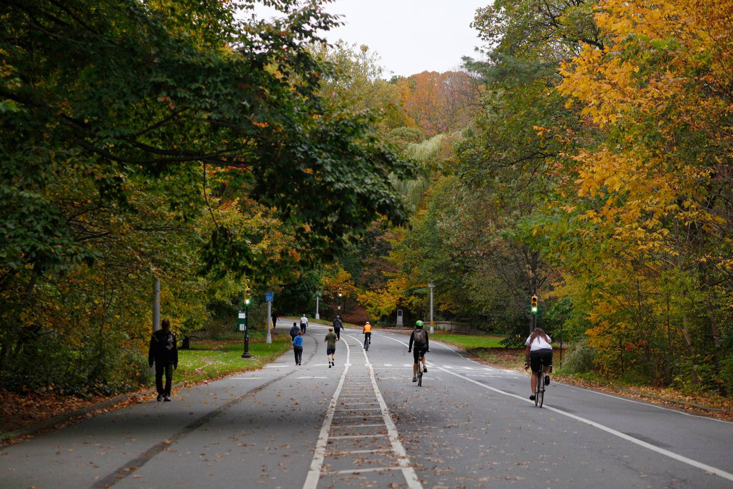 Prospect Park in the fall